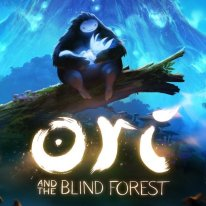 Ori and The Blind Forest2