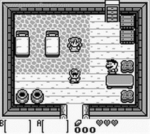 Links Awakening(2)