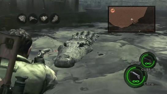 Resident Evil 5(2)
