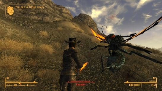 Fallout New Vegas(3)