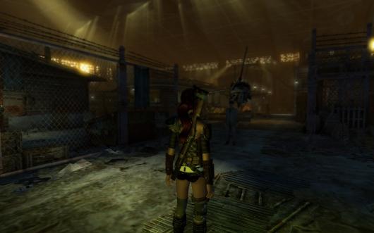 Fallout New Vegas(5)
